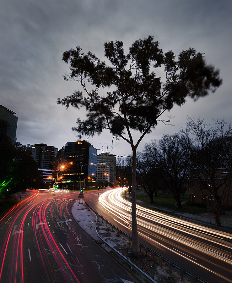 Queen St, Melbourne - An example of where the shutter was left open a little too long (see blur around tree)