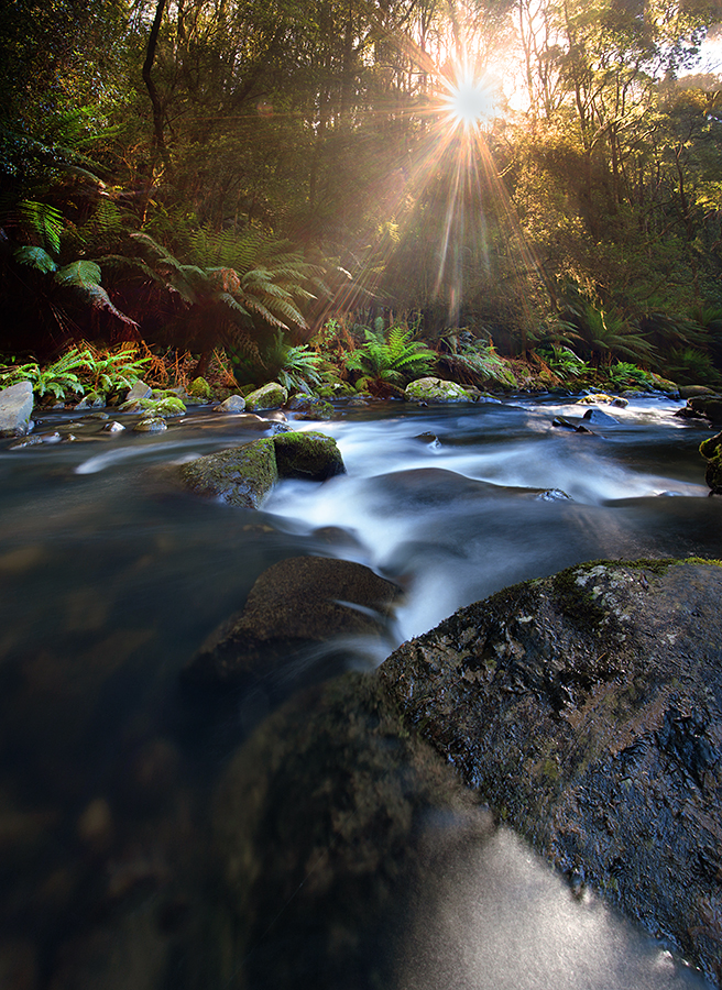 Conditions were patchy at Hopetoun Falls with some harsh sunlight at times. It wasn't ideal but lucky for us the sun made way at times allowing for some photos