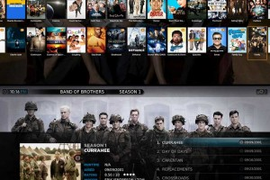 Plex provides a beautiful user experience as it neatly sorts your library with relevant photos, text and subtitles for your media