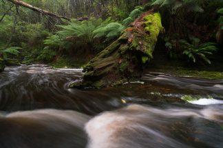 Snug Falls Stream