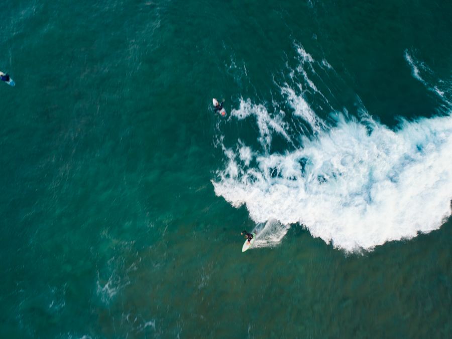 Surfing at Narrabeen, NSW